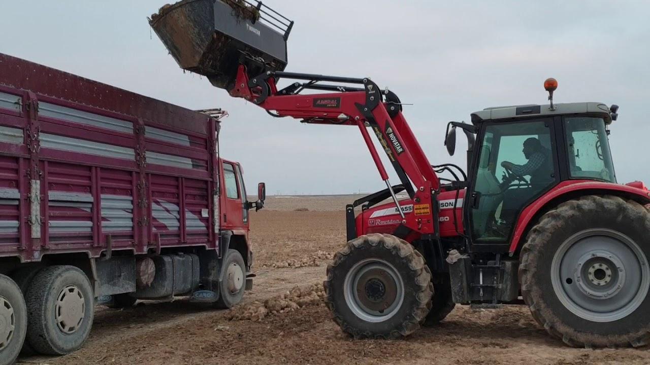 Novatar Traktör ön yükleyici massey 6460 pancar yükleme