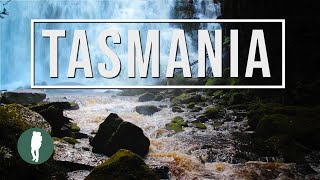 Tour Australia: Tasmania in HD