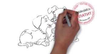 Смотреть онлайн 101 далматинец  Как правильно нарисовать щенка из мультфильма 101 далматинец