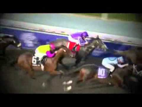 2015 Breeders Cup Horse Odds - Keeneland Racetrack Entries