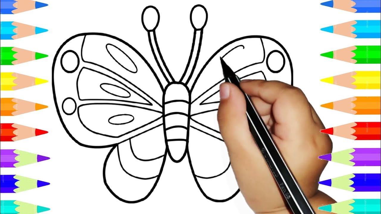 children learn to draw colorful butterfly drawing and coloring