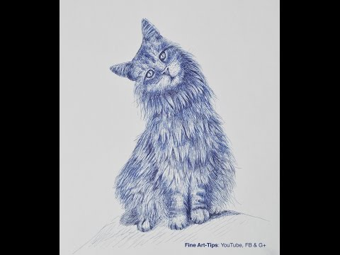 How to Draw a Cat With Fountain Pen