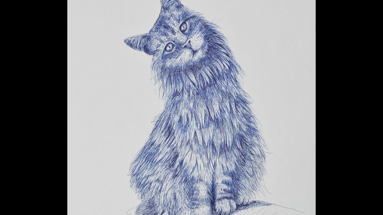 how to draw a cat with fountain pen youtube