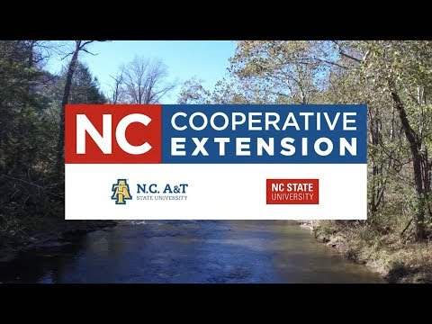 N.C. Cooperative Extension | Service Vision