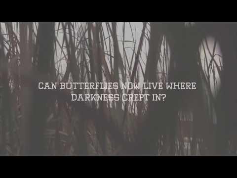 Ella Grace - Here We Are Again (Lyric Video)