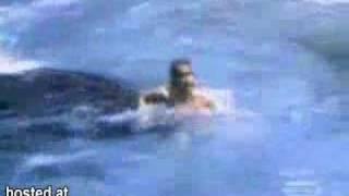Killer Whale Attacks A Woman