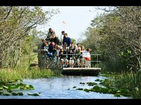 Alligator Air Boat Tours Everglades Miami Florida 2015 Exclusive