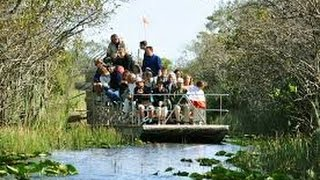 Alligator Air Boat Tours Everglades Miami Florida - 2015 Exclusive Review Video