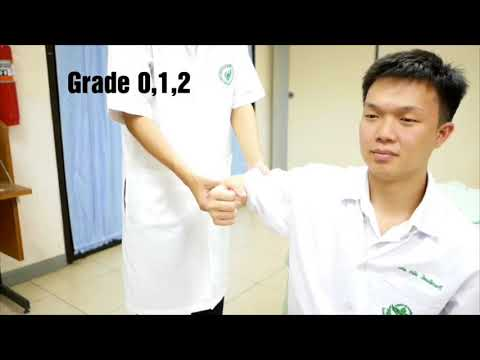manual muscle test of key muscles