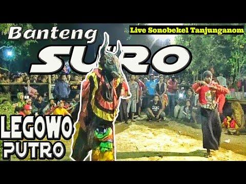 Pentas Bantengan Seru Jaranan Legowo Putro Live Sonobekel Tanjunganom
