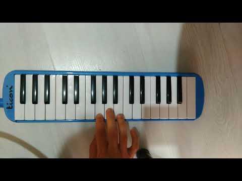 Kolay melodika notalari