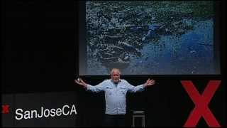 The man who planted trees - pay it forward to the year 4012: David Milarch at TEDxSanJoseCA