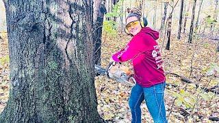 Yes a teenage girl can fell oak tree using Stihl chainsaw
