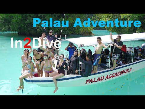 In2Dive Takes Palau