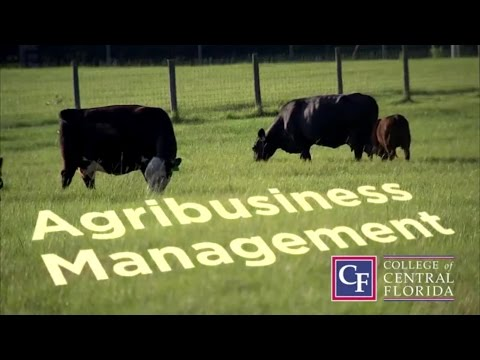 Agribusiness Management at CF