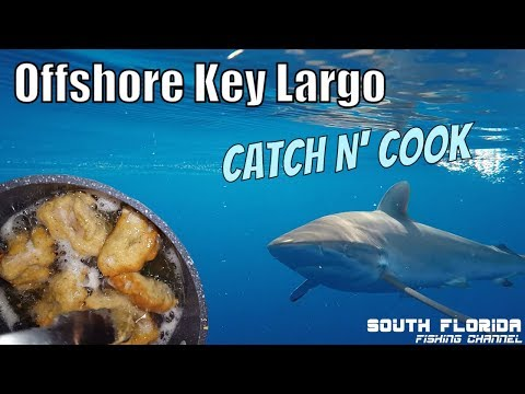 Fishing 17+ hours offshore Key Largo | Beer Battered Fish Catch N Cook