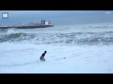 Dramatic Brighton rescue as owner jumps in sea to save dog || Dramatic Brighton
