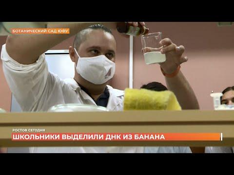 Ростов сегодня: дневной выпуск. 23 сентября 2021