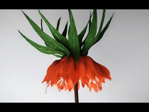 ABC TV | How To Make Crown Imperial Paper Flower From Crepe Paper - Craft Tutorial