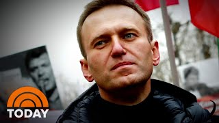 """Alexei navalny, a high-profile opponent of russian president vladimir putin, spoke out in """"60 minutes"""" interview over the weekend about surviving poisoni..."""