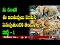 dreams predictions in telugu l Meaning of dreaming with animals part 1 I rectv mystery
