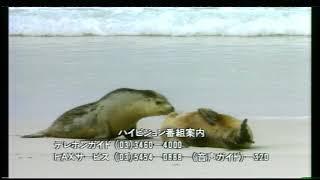 Sample 1050i Analog HDTV - Japanese MUSE Hi-Vision test broadcast