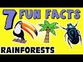 7 FUN FACTS ABOUT RAINFORESTS! RAINFOREST FACTS FOR KIDS! Learning Colors! Funny Frogs! Sock Puppet!