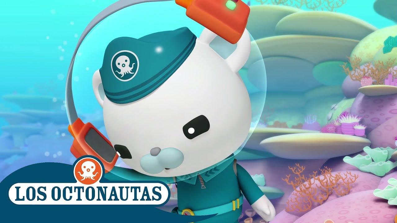 Los Octonautas Oficial en Español - Pequeño pero Ruidoso | Compilación