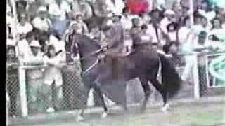 Tupac Amarú FC, en Pereira en el año 1...