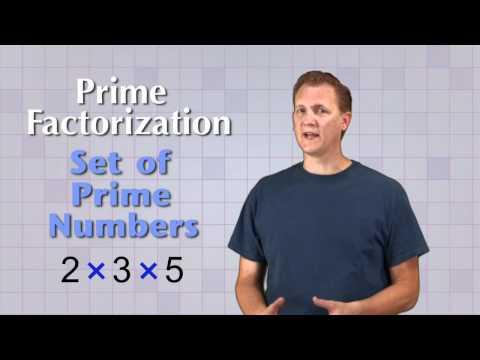 Math Antics - Prime Factorization