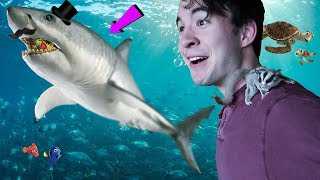 Today, I embark on a journey to eat shark. Will I succeed in my ven...