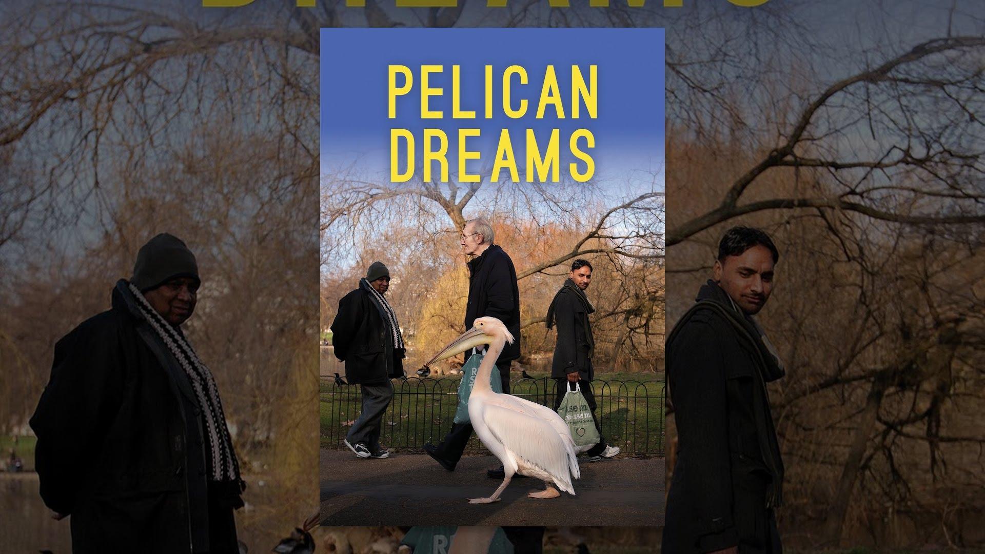 Pelican Dreams - YouTube