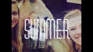 ♞ Souvenirs d'été... ♞
