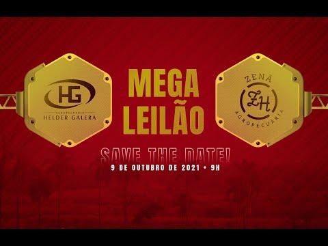 Lote 121   Otero LF Caetano   CAET 440 Copy
