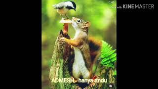 Download musik andmesh hanya rindu mp3