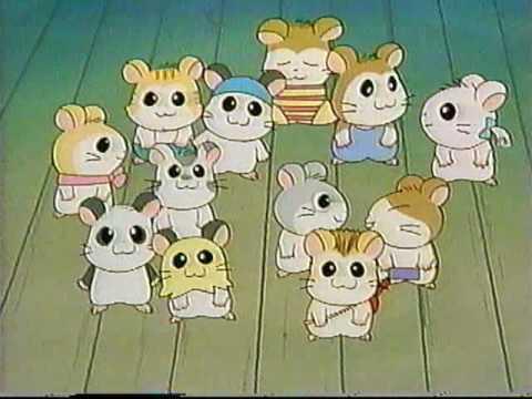 Tottoko Hamutaro Anime Dechu!  rare Hamtaro anime