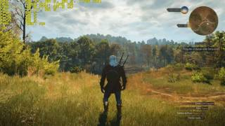 THE WITCHER 3 HD 7870+CORE I5 3330