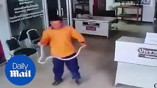 Moment Thai man stops snake attacking him with bare hands