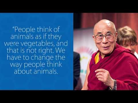 Dalai Lama's Epic Fail