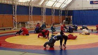 Всероссийский день самбо отметят сегодня в школах Кубани