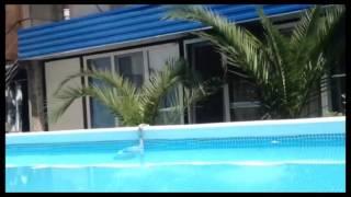 видео Снять дом в Сочи: аренда 100 домов посуточно и на длительный срок