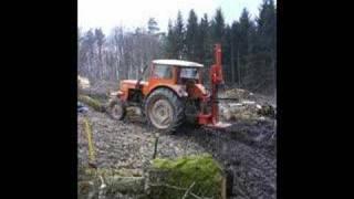au bois a la placardelle - hivers 2007-8
