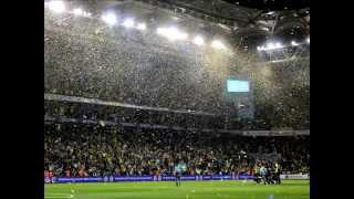 Fenerbahçe 15-16 Sezonu Gol Müziği ( Live is Life )