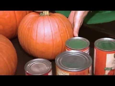Pumpkin Vs. Pumpkin Pie Mix In A Can