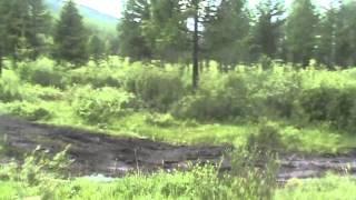 nissan mistral hubsugul mongolia