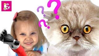 СТРИЖЕМ КОТА  НАЛЫСО. MISHKA CAT. EVE MAKES FASHIONABLE HAIRCUT