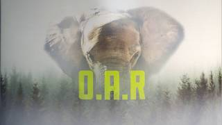 OAR & Great Lakes Brewing - The Mighty Lager Video