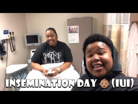 INSEMINATION DAY   IUI PROCEDURE 👶🏽   FEBRUARY 12, 2019 from YouTube · Duration:  22 minutes 10 seconds