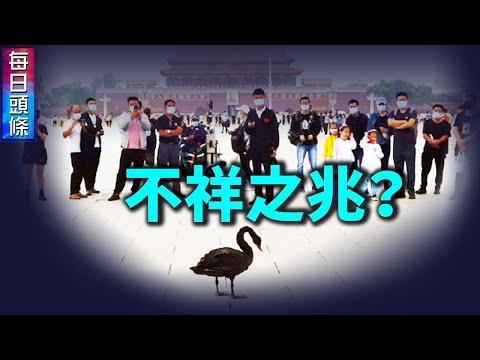 黑天鹅在天安门广场散步 什么征兆;时日无多 中共延安窑洞群垮塌【希望之声TV-每日头条-2021/9/5】