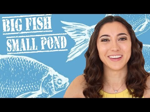 Harvard Graduate: Small Fish, Big Pond